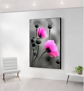 Grand Tableau Fleurs de pavot rose monochrome