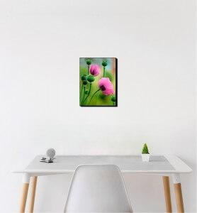 Petit Tableau Fleurs de pavot rose