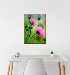 Moyen Tableau Fleurs de pavot rose