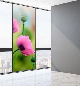 Vitrophanie Fleurs de pavot rose