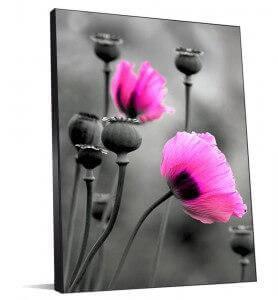 Tableau Fleurs de pavot rose monochrome