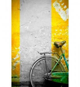 Tableau Bicyclette verte  noir et blanc