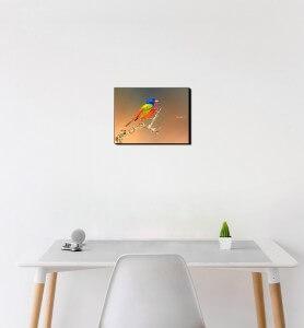 Petit Tableau Passerin l'oiseau multicolore