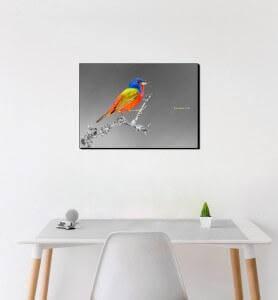 Moyen Tableau Passerin l'oiseau multicolore noir et blanc