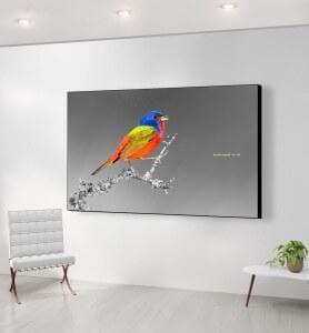 Grand Tableau Passerin l'oiseau multicolore noir et blanc