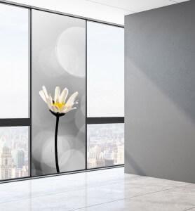 Vitrophanie Naissance d'une fleur noir et blanc