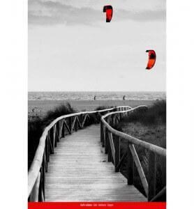 Tableau Cerfs-volants en Andalousie noir et blanc