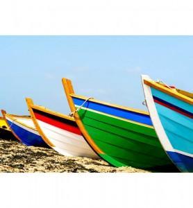 Tableau Barques de pêcheurs colorées