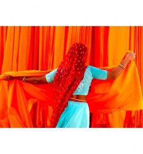 Tableau Saris du rajasthan