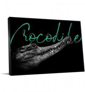 tableau noir et blanc crocodile