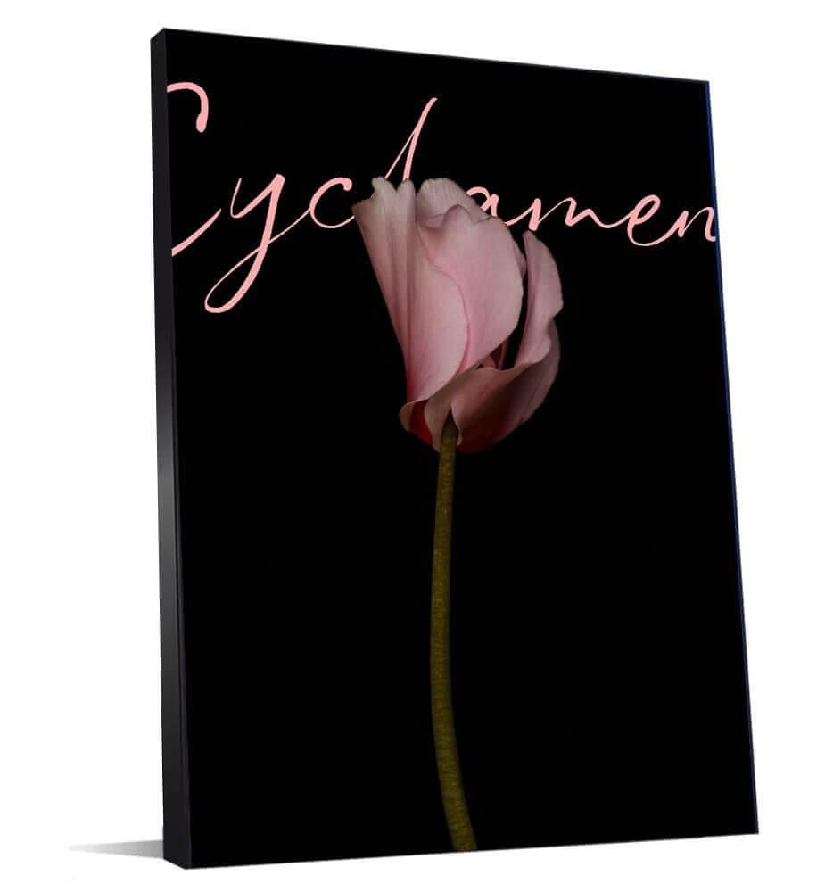 Cadre photo de fleur pour votre décoration d'entreprise
