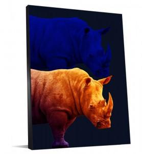 Rhinocéros tendance pour votre déco