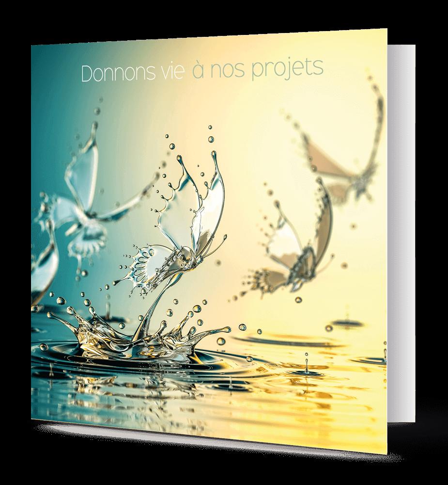 cartes de vœux papillons d'eau
