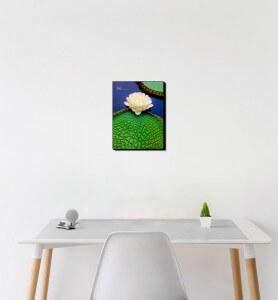 Petit Tableau décoration Fleur de nénuphar