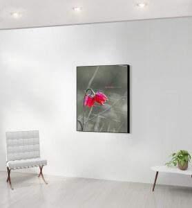 Moyen Tableau décoration Fleur sauvage