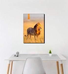 Moyen Tableau décoration Lion au Kenya