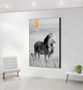 Grand Tableau décoration Lion au Kenya  noir et blanc