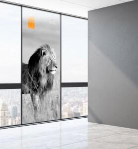 Vitrophanie Tableau décoration Lion au Kenya noir et blanc