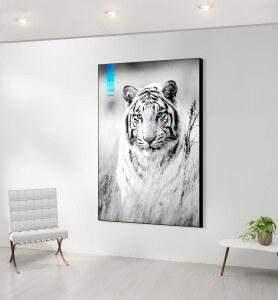 Grand Tableau décoration Tigre blanc