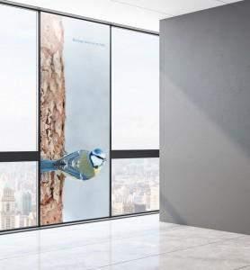 Vitropahnie Mésange bleue