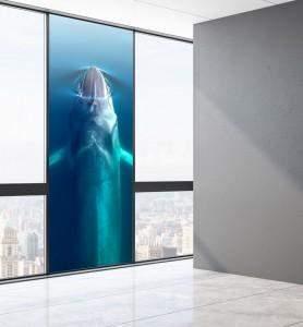 Vitrophanie au-dessus de la Baleine bleue