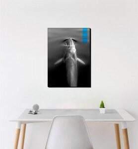 Moyen Tableau au-dessus de la Baleine bleue noir et blanc