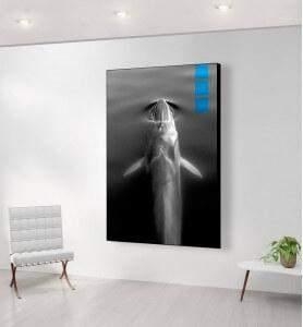 Grand Tableau au-dessus de la Baleine bleue noir et blanc
