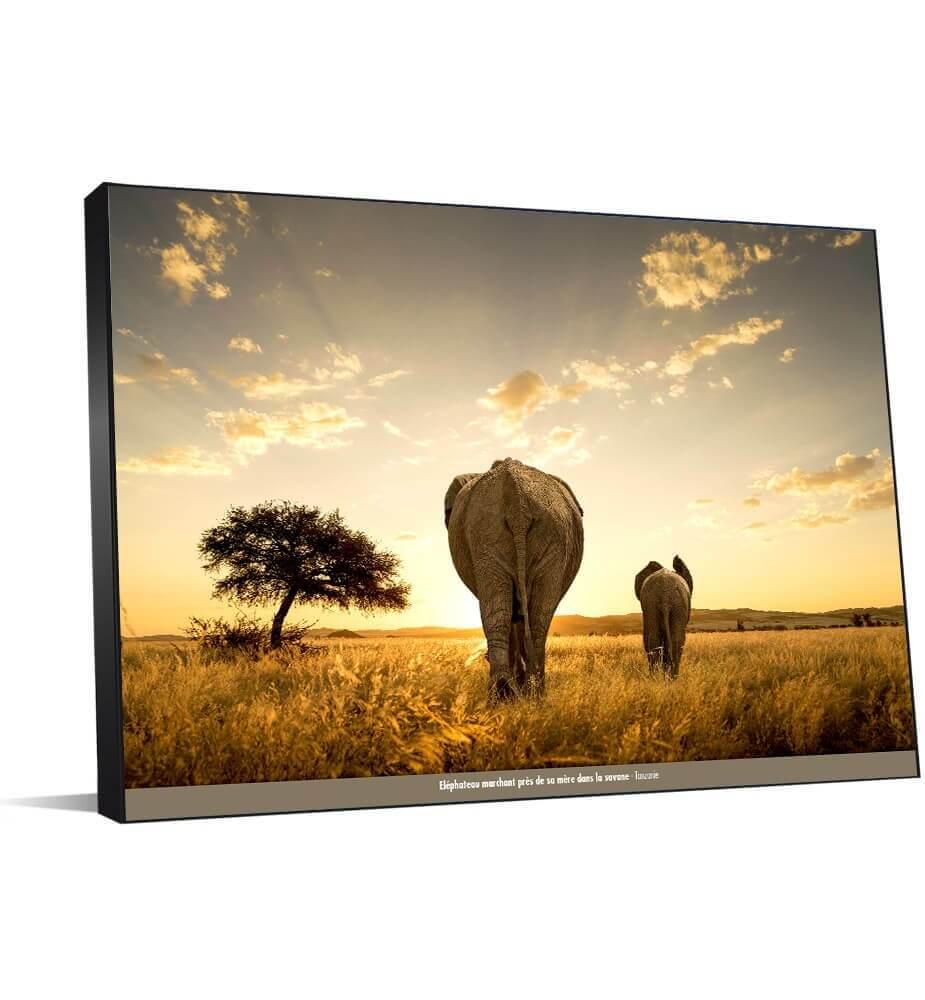 Tableau décoration Eléphants en Tanzanie