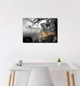 Moyen Tableau Le regar du Léopard noir et blanc