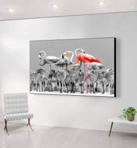Grand Tableau Flamands roses du Yucatan noir et blanc