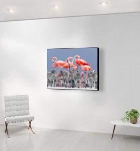 Moyen Tableau Flamands roses du Yucatan