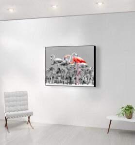 Moyen Tableau Flamands roses du Yucatan noir et blanc