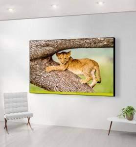Grand Tableau Lionceau joueur du Masaï-Mara